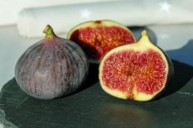 figs-1620664_1280